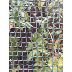 Malla cuadrada verde 1 x 25 m